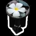Bouchon bonde lavabo motif design Fleur sur galets